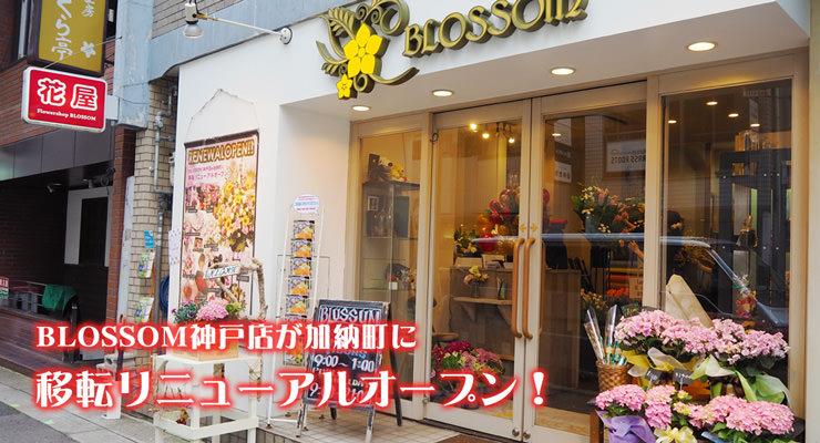 神戸・三宮本店が加納町に移転リニューアルオープン!